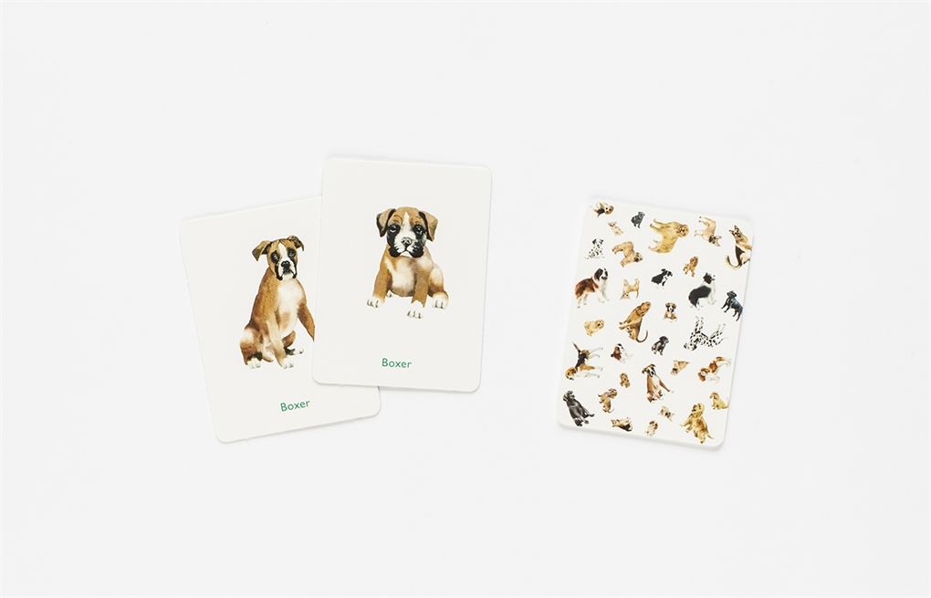 A Memory Game by Emma Aguado Free Shipping! Dogs /& Puppies English